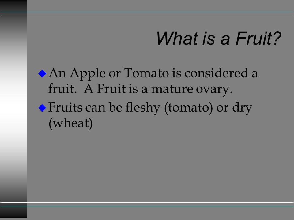 What is a Fruit. An Apple or Tomato is considered a fruit.