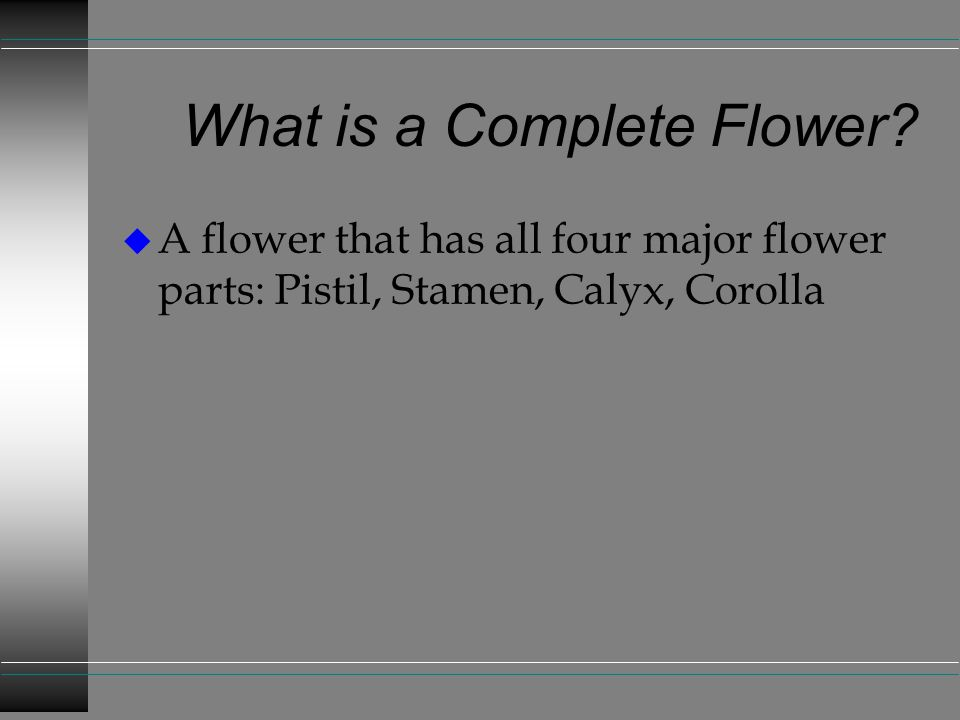 What is a Complete Flower