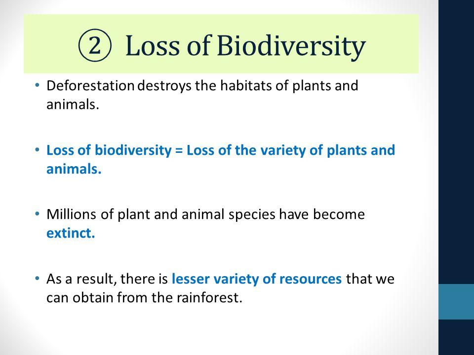 an analysis of effects of deforestation in wildlife habitats biodiversity Transcript of effect of deforestation on animal habitats in malaysia reasons of deforestation deforestation about 50% of rainforest was wiped out and more rainforest is continually disappearing and in 2022, 98% of rainforest will be destroyed  effect on animals orangutan over view: locate: borneo and sumatra.