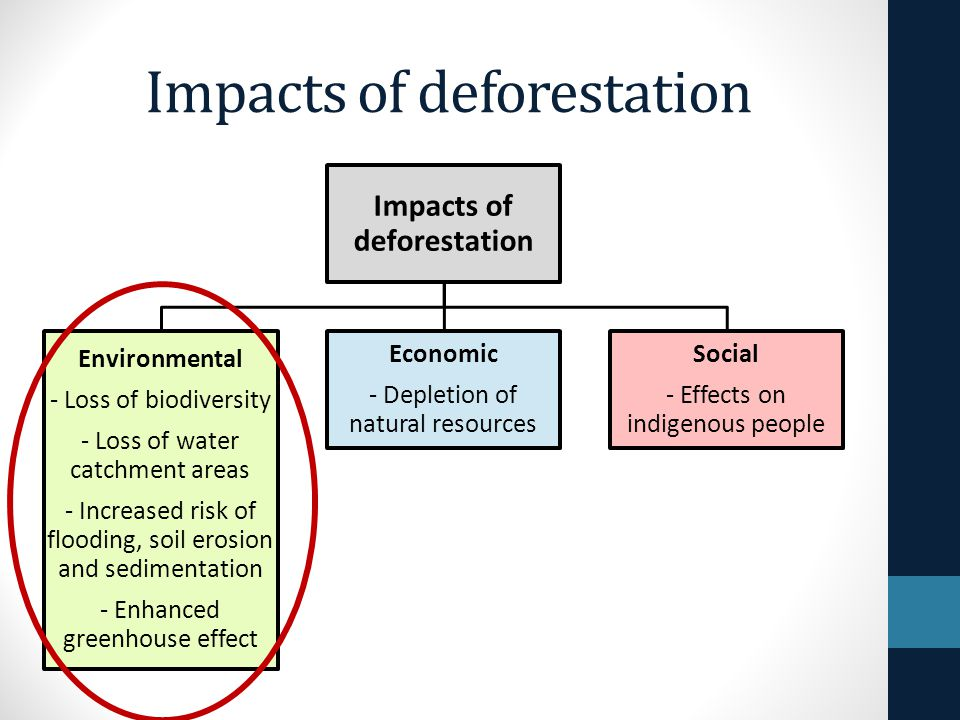 Effects Of Depletion Of Natural Resources