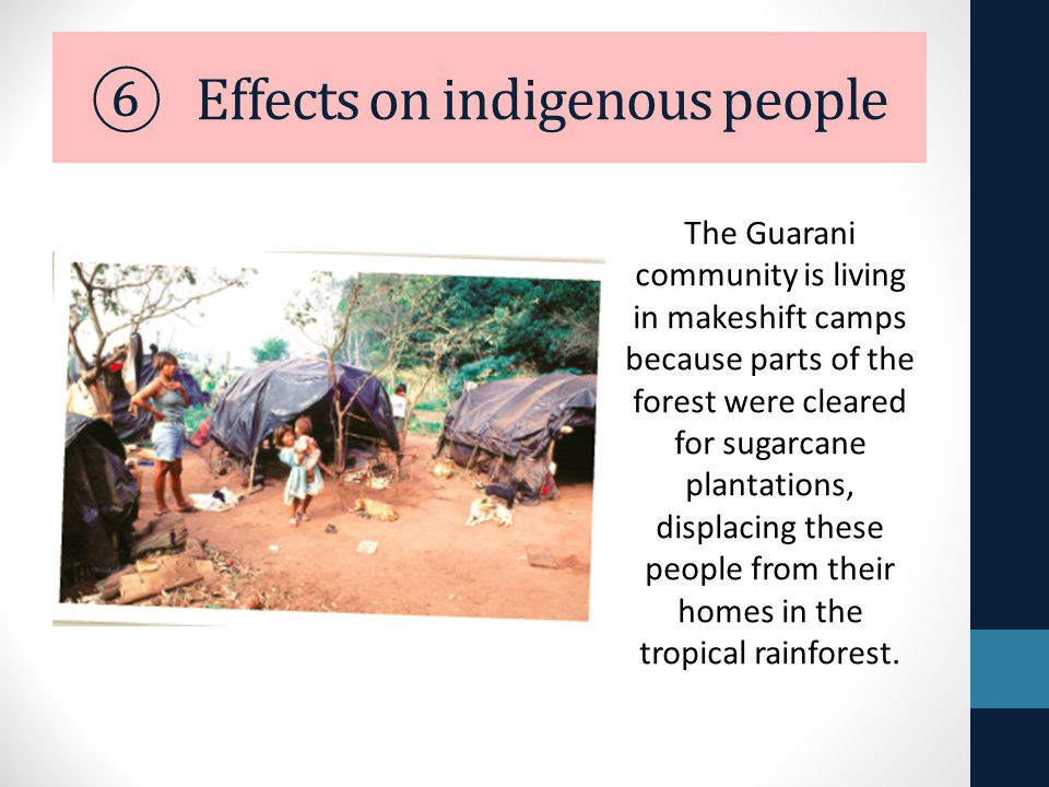 effect of deforestation on indigenous people This prevents any further deforestation to occur until each province has the law in effect  deforestation in argentina  almost 40 thousand indigenous people.