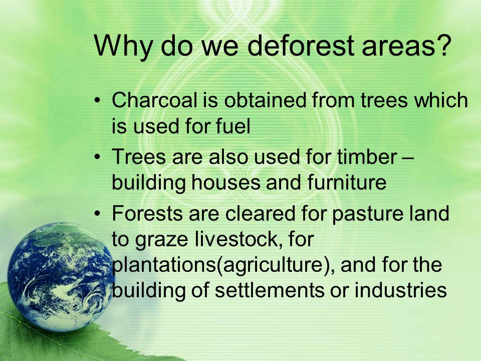 Man s impact on the environment ppt video online download for What do we use trees for