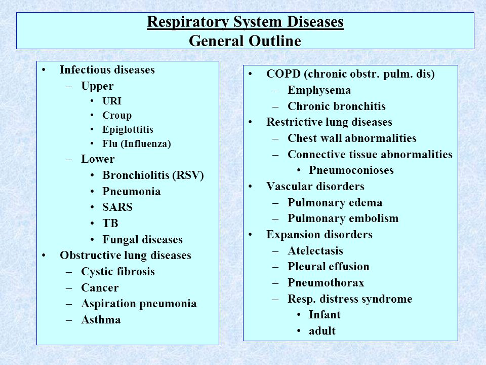 respiratory system and diseases Q: how does the respiratory system relate to other systems in the human body   it is kind of weird to think of or read about how your muscles works, and then.