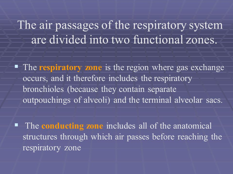 The air passages of the respiratory system are divided into two functional zones.