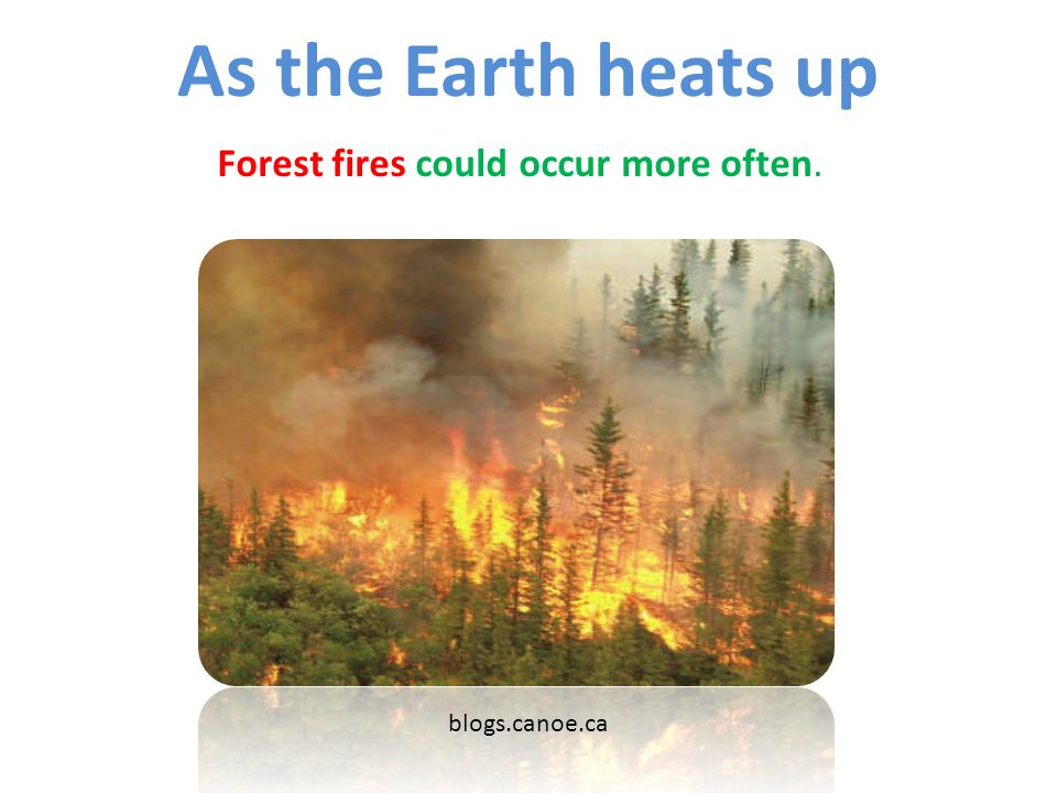 As the Earth heats up Forest fires could occur more often.