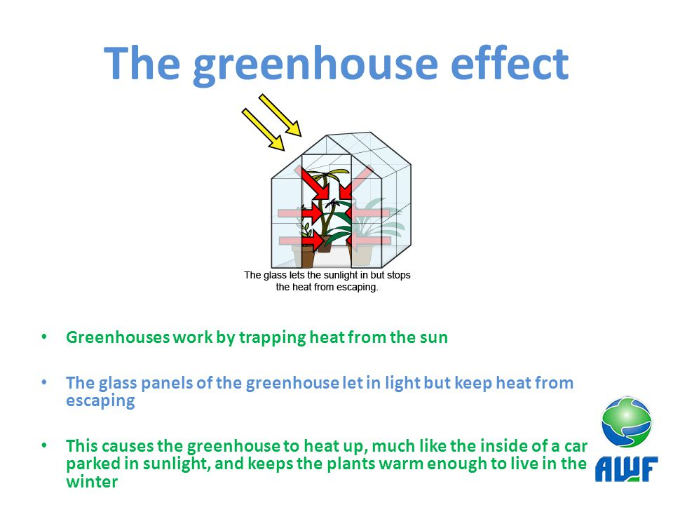The greenhouse effect Greenhouses work by trapping heat from the sun