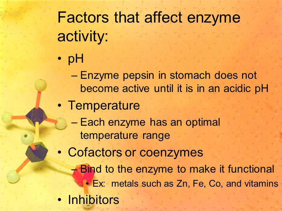 Factors that affect enzyme activity: