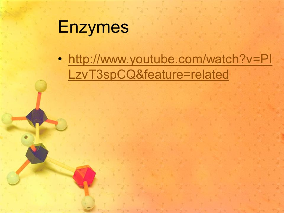Enzymes   v=PILzvT3spCQ&feature=related