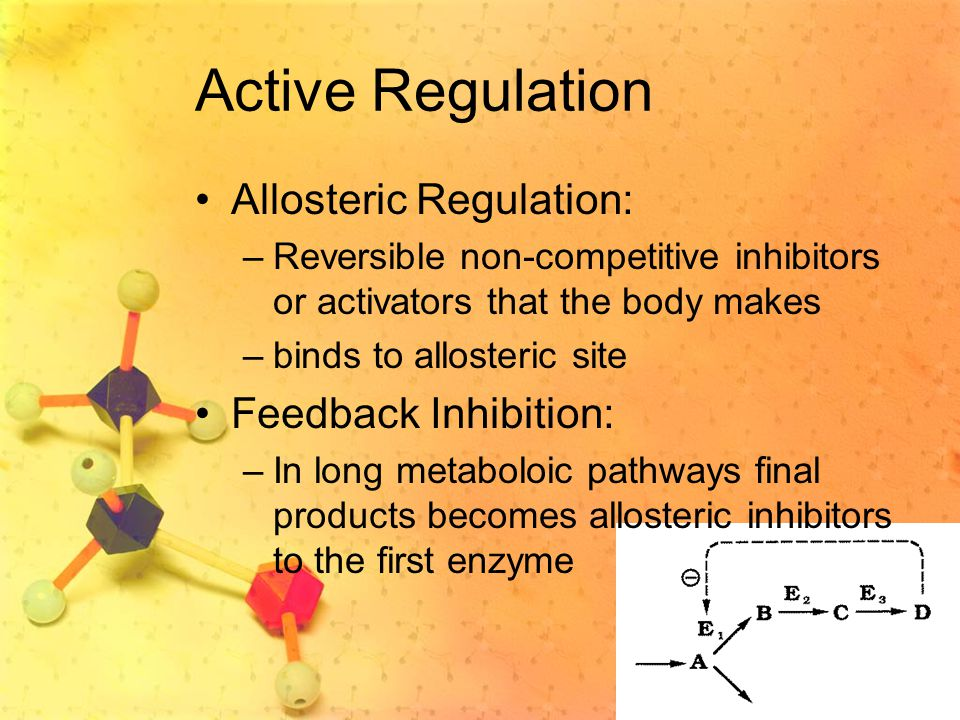 Active Regulation Allosteric Regulation: Feedback Inhibition: