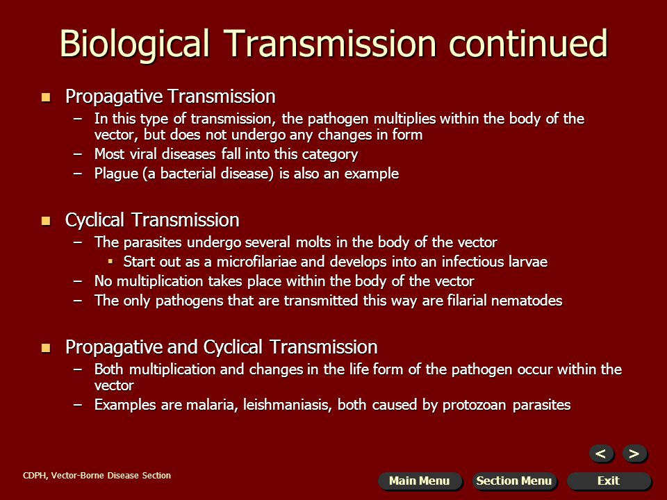 the transmission of pathogens biology essay Chapter 2: transmission and pathogenesis of tuberculosis 21 introduction tb is an airborne disease caused by the bacterium  mycobacterium tuberculosis.
