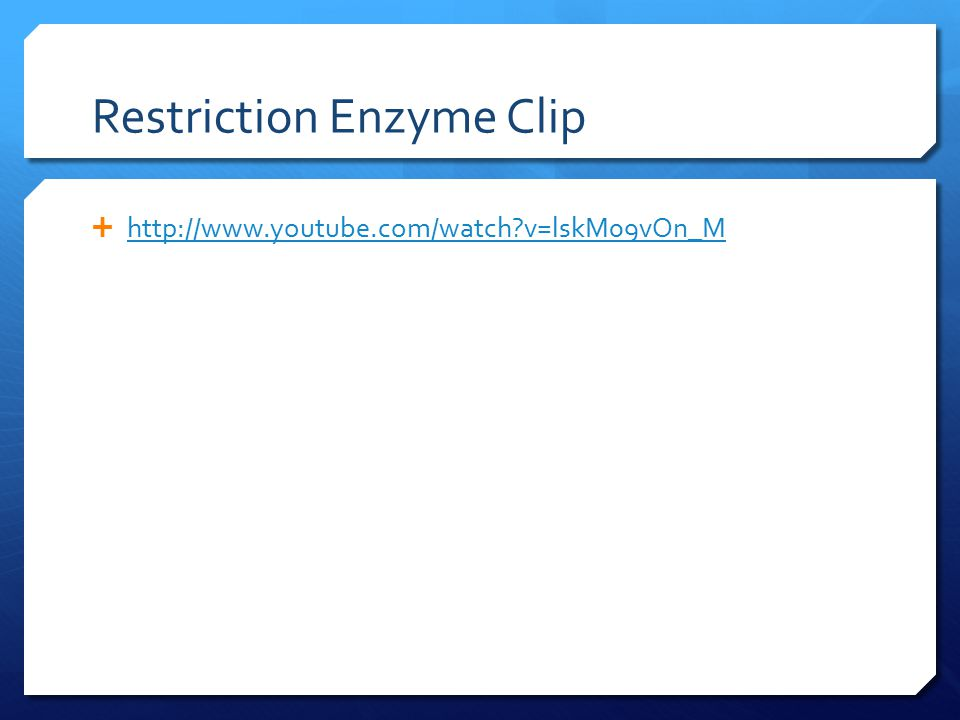 Restriction Enzyme Clip