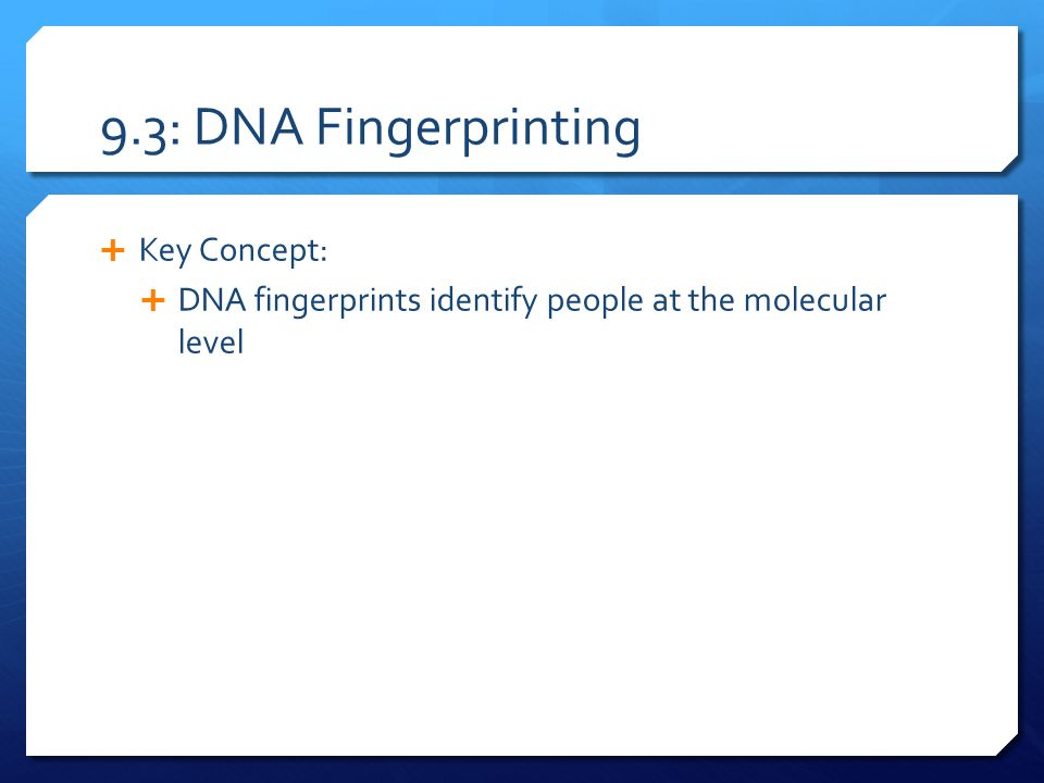 9.3: DNA Fingerprinting Key Concept: