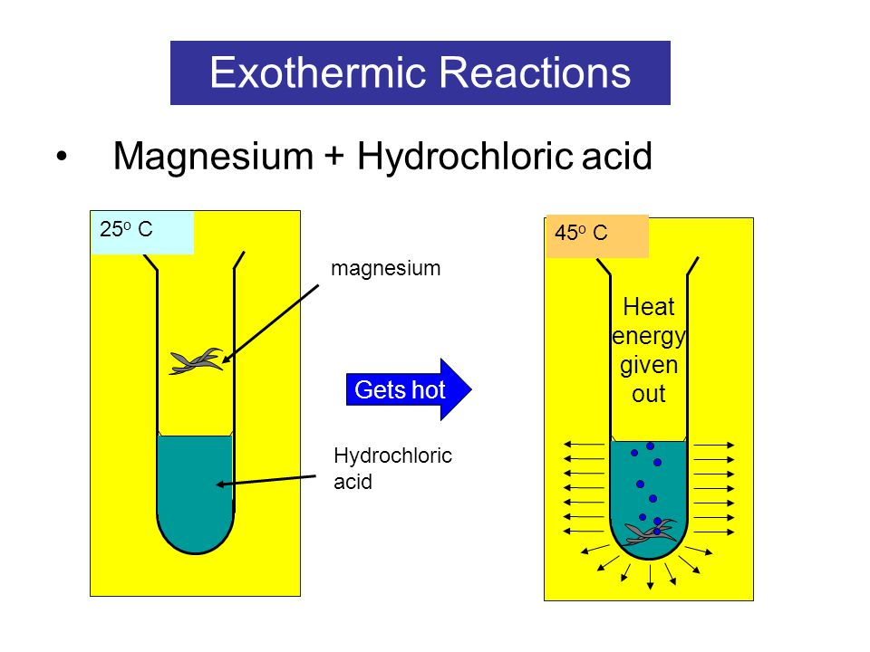 reaction between hydrochloric acid and magnesium essay Best essay writing service the reaction of magnesium and dilute hydrochloric acid the reaction of magnesium and dilute hydrochloric acid the reaction of magnesium.