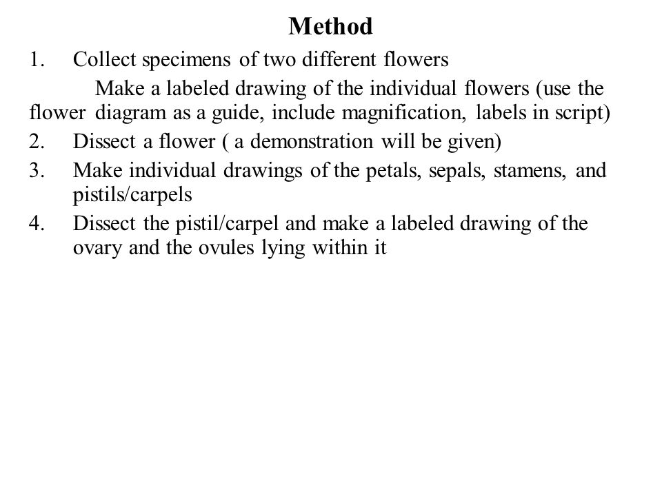 Use the following to label the flower diagram below ppt video method collect specimens of two different flowers ccuart Image collections