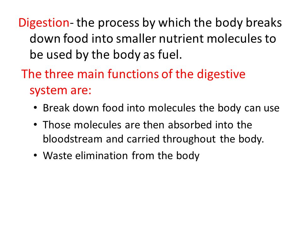 The three main functions of the digestive system are: