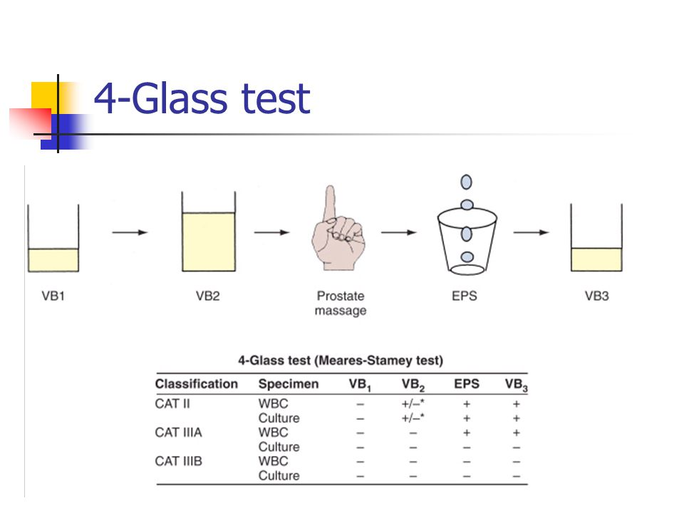 4-Glass test
