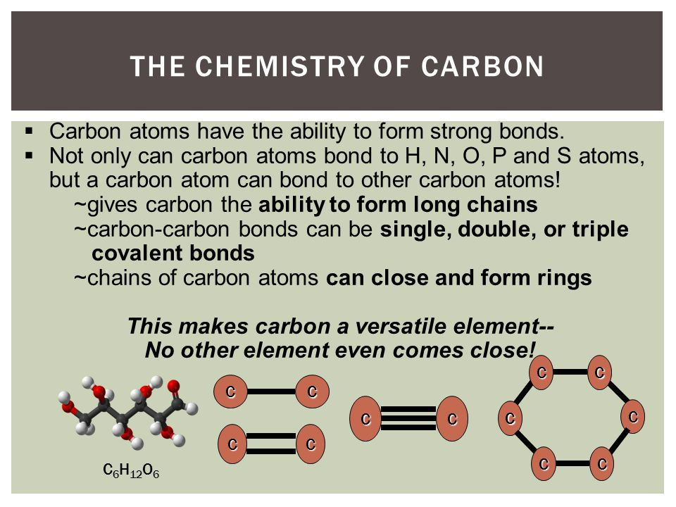 Why is carbon so important to life? - ppt video online download