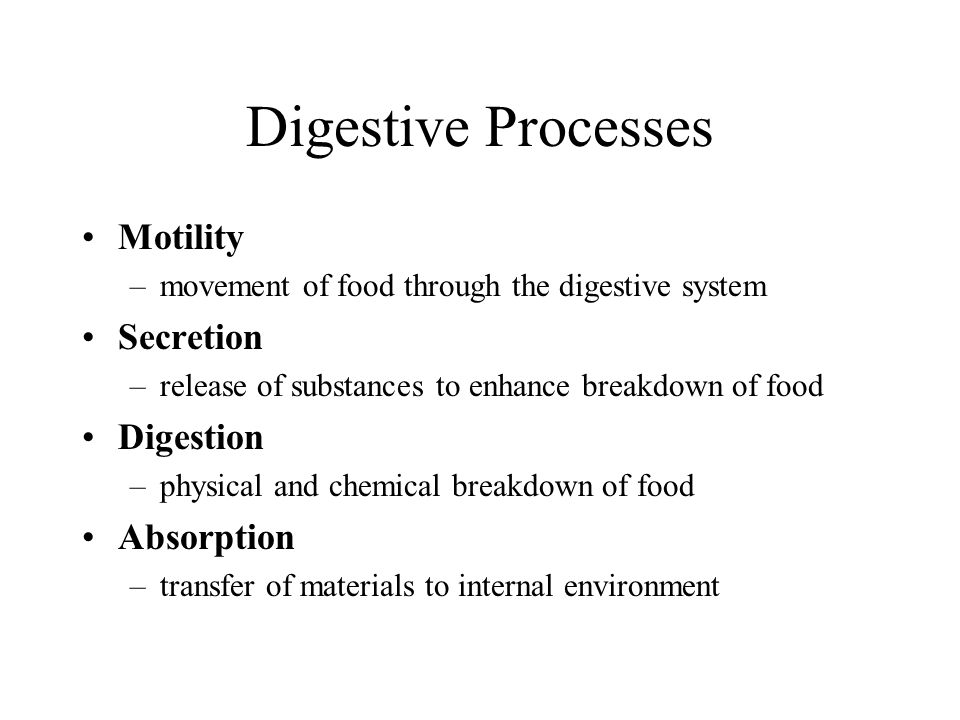 Digestive Processes Motility Secretion Digestion Absorption
