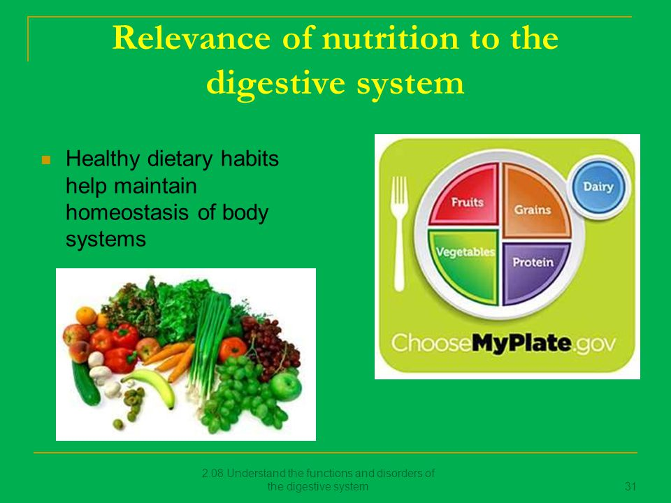 nutrition and the digestive system Amazoncom: digestion and nutrition (the human body: how it works) ( 9781604133677): robert sullivan,  the digestive system: systems of the body  series.