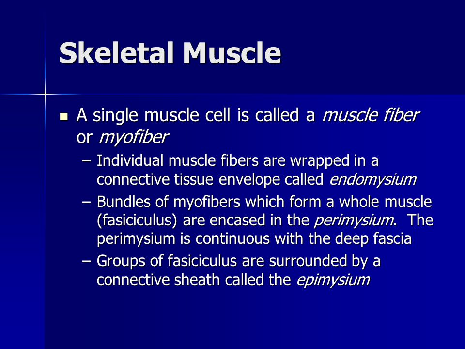 Chapter 1 Musculoskeletal Tissue - ppt download