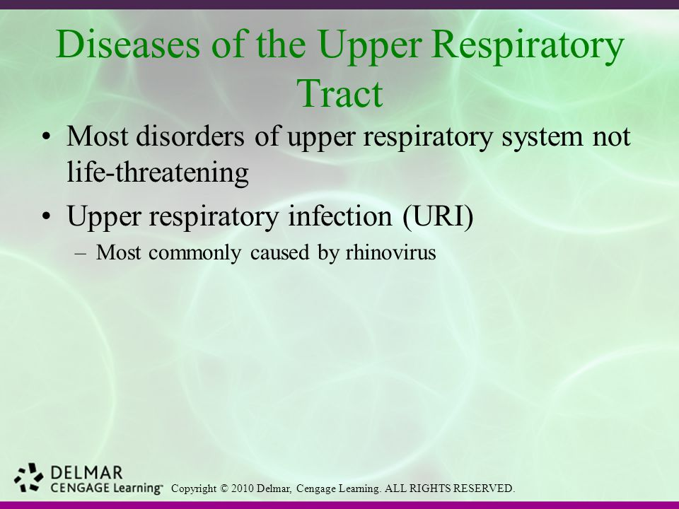 Diseases of the Upper Respiratory Tract