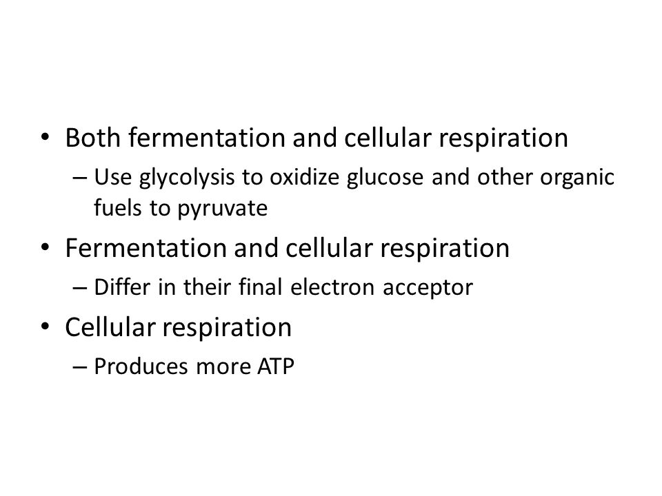 Difference between Respiration and Fermentation