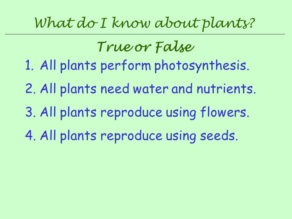What do I know about plants
