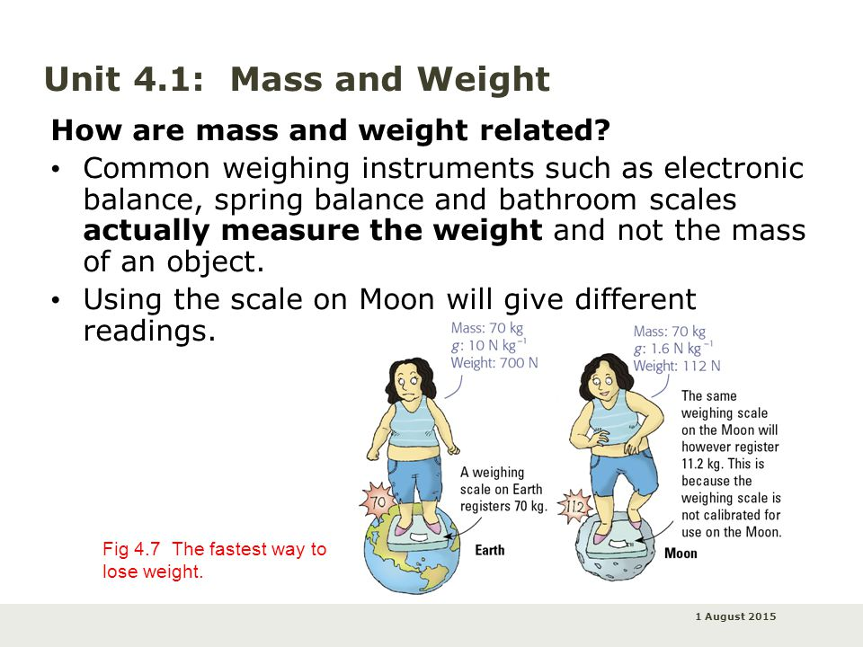 is mass and weight directly proportional relationship