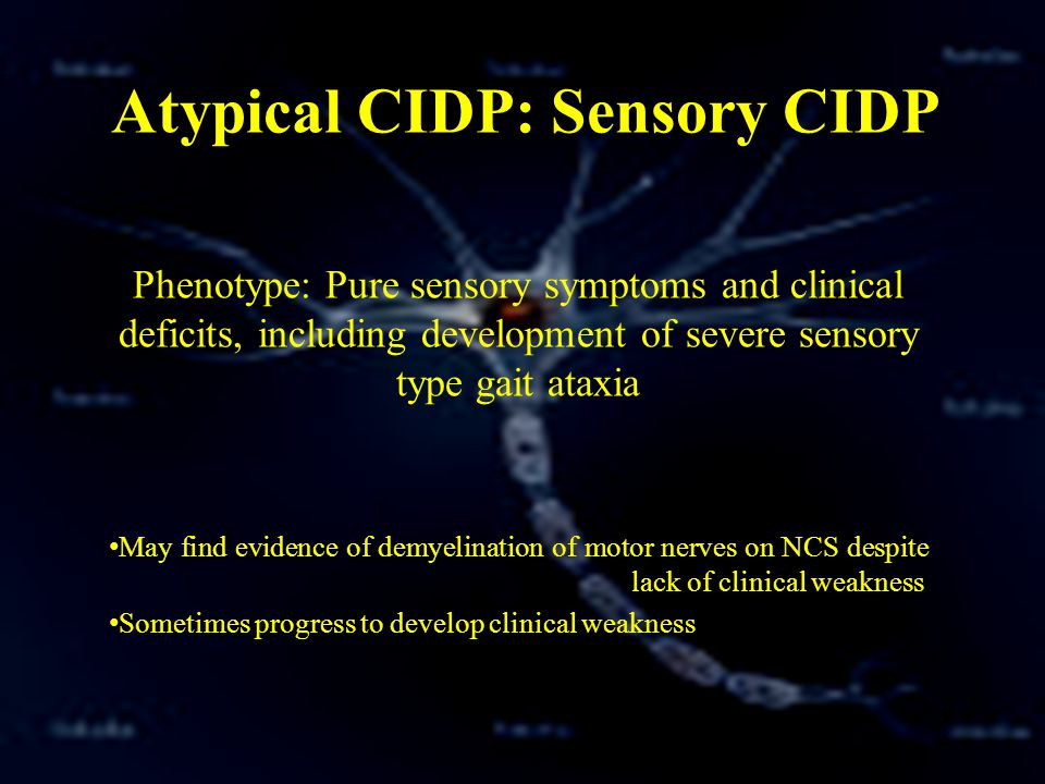 Chronic Immune Mediated Demyelinating Polyneuropathy Ppt