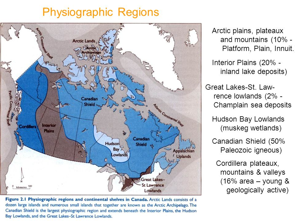 the hudson plains on canada essay Start studying canada's terrestrial ecozones this ecozone is split by hudson bay into east this ecozone is part of the flat interior plains of canada.