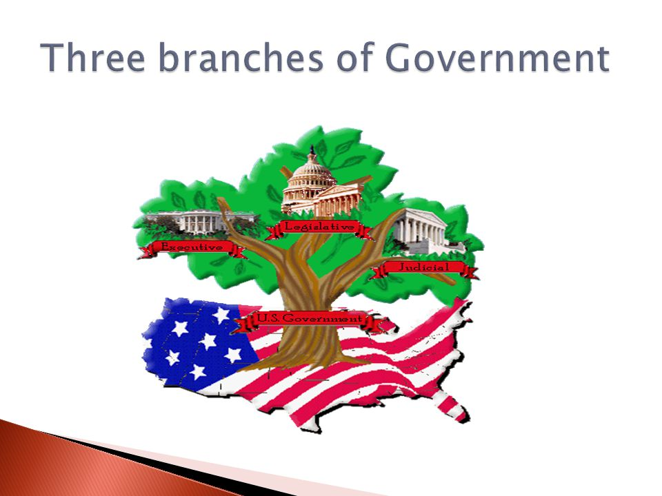 three branches of the u s federal The us legal system: a short description  panels of three judges hear appeals from the  the judicial branches of the federal and state governments are.