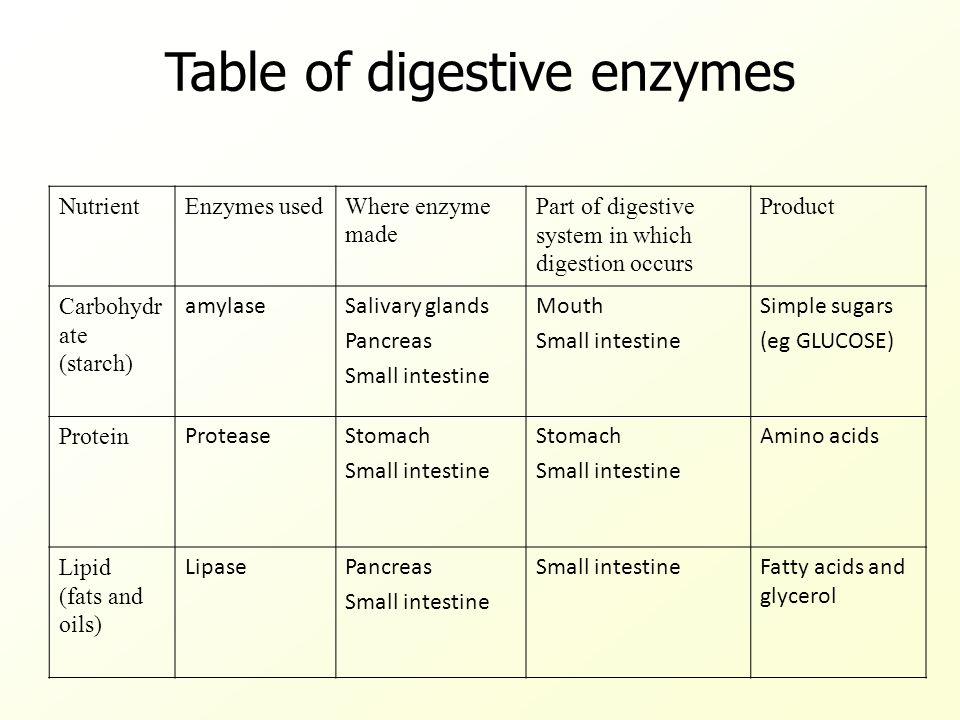Enzymes in Digestion Text p ppt download