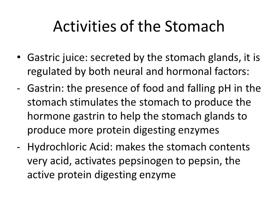 Activities of the Stomach