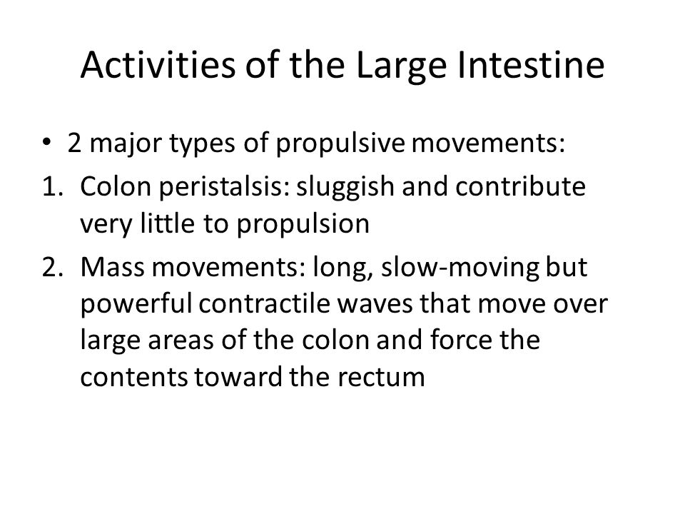 Activities of the Large Intestine