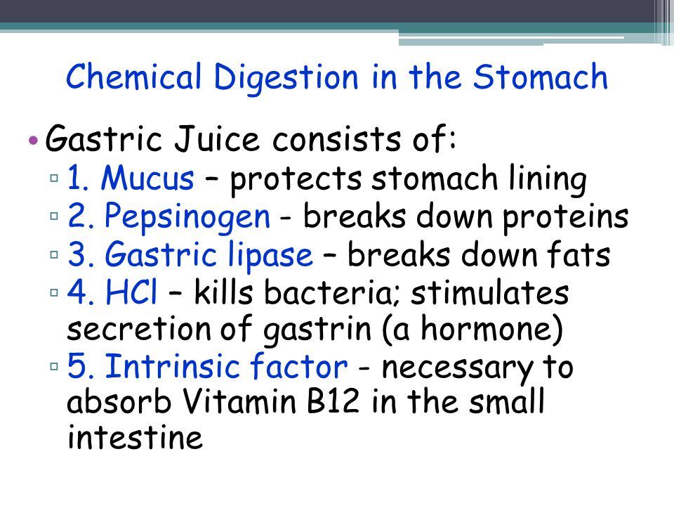 the chemical aspects of digestion and the breakdown of the proteins Most chemical digestion takes place in the duodenum by chemicals secreted by the 1 it produces enzymes which help breakdown proteins, lipids, and carbohydrates.