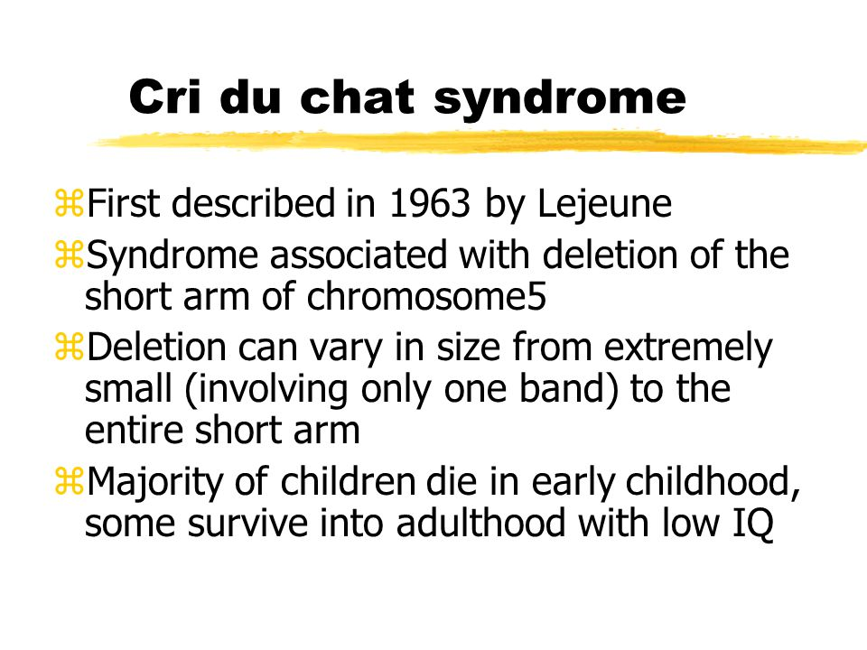 assignment cri du chat syndrome Read this essay on cri assignment come browse our large digital warehouse of free sample essays get the knowledge you need in order to pass your classes and more only at.