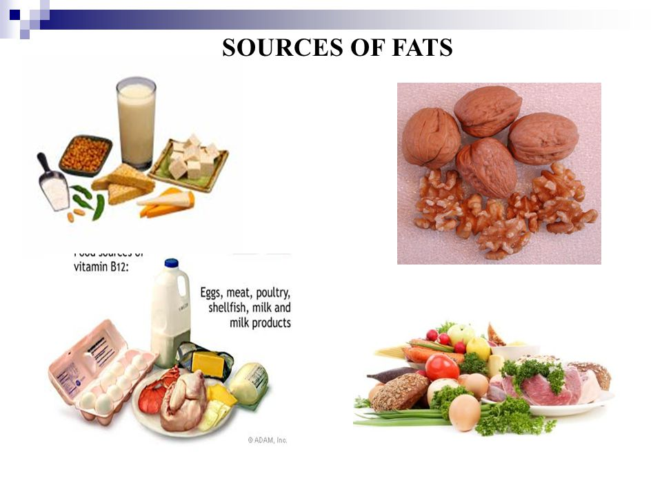 Nutrients ppt video online download for Fish oils are a good dietary source of