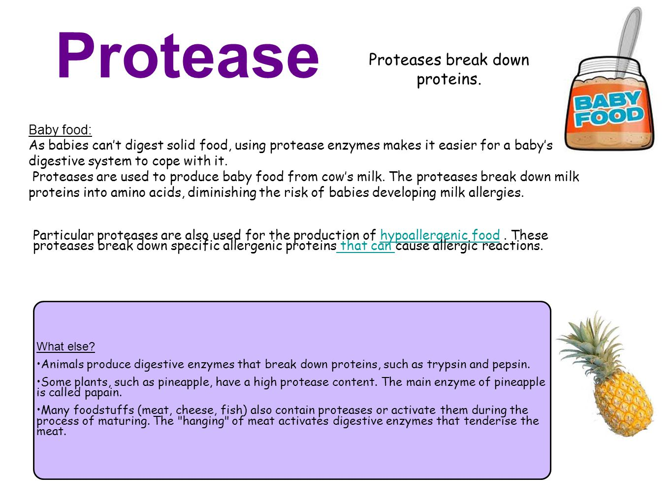 Proteases break down proteins