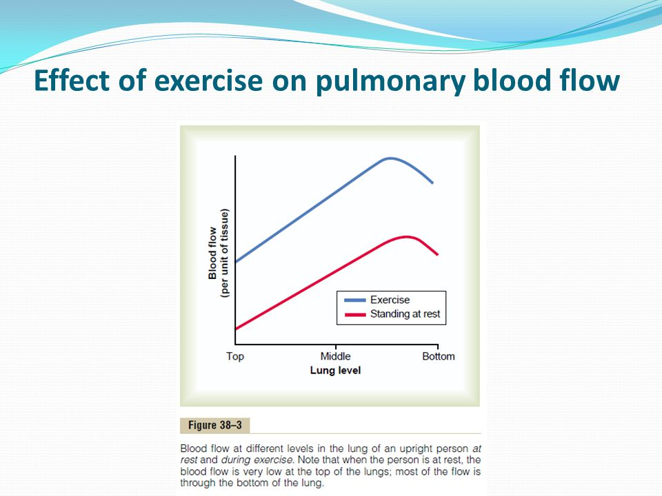 Effect of exercise on pulmonary blood flow