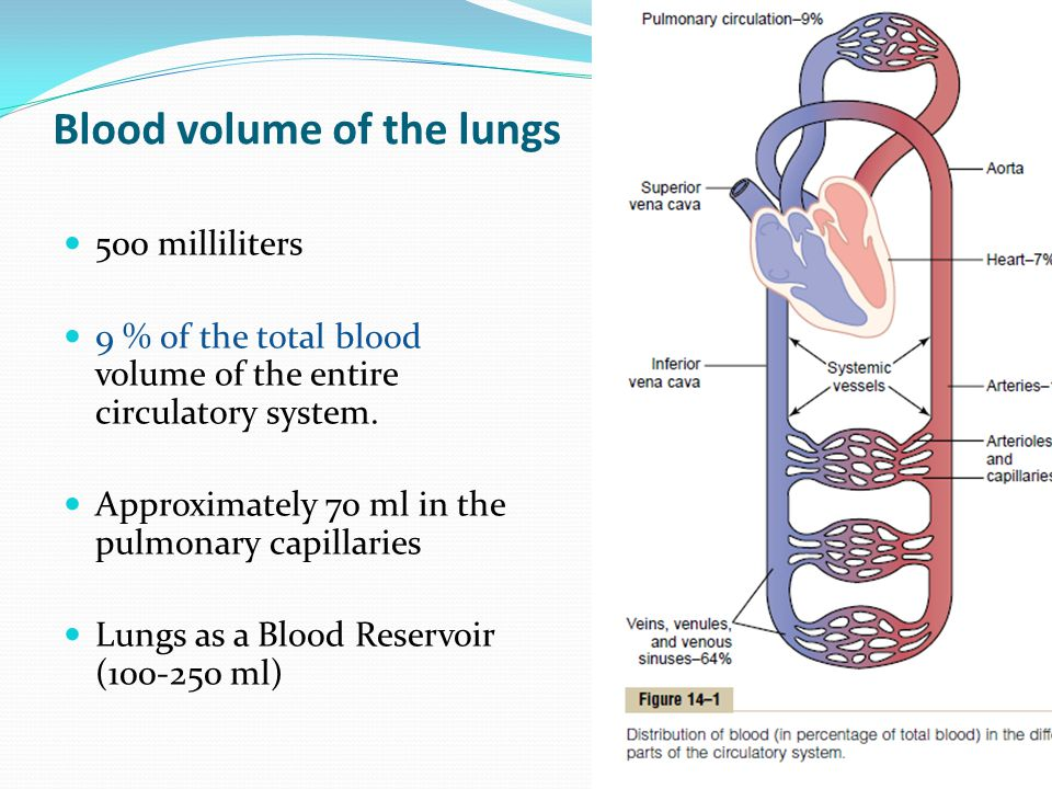 Blood volume of the lungs