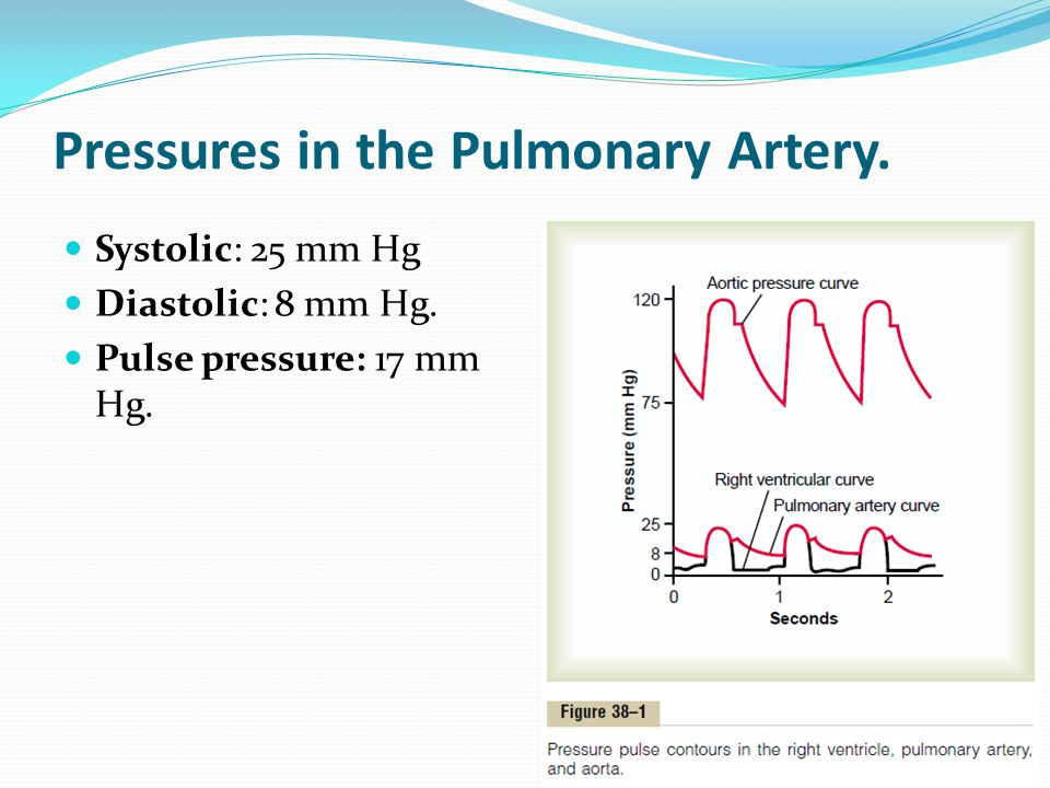 Pressures in the Pulmonary Artery.