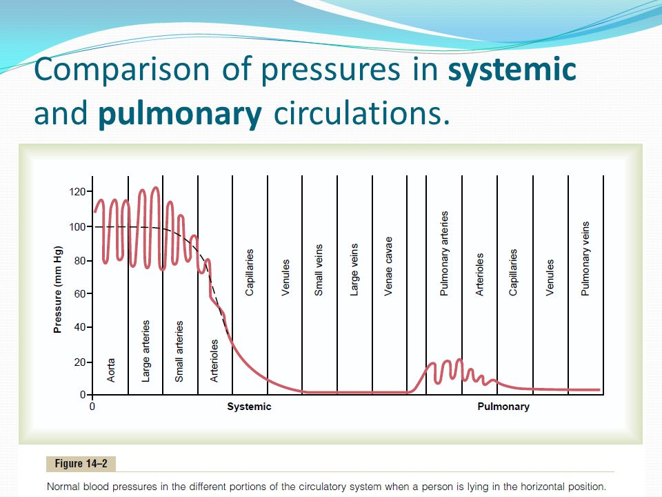 Comparison of pressures in systemic and pulmonary circulations.