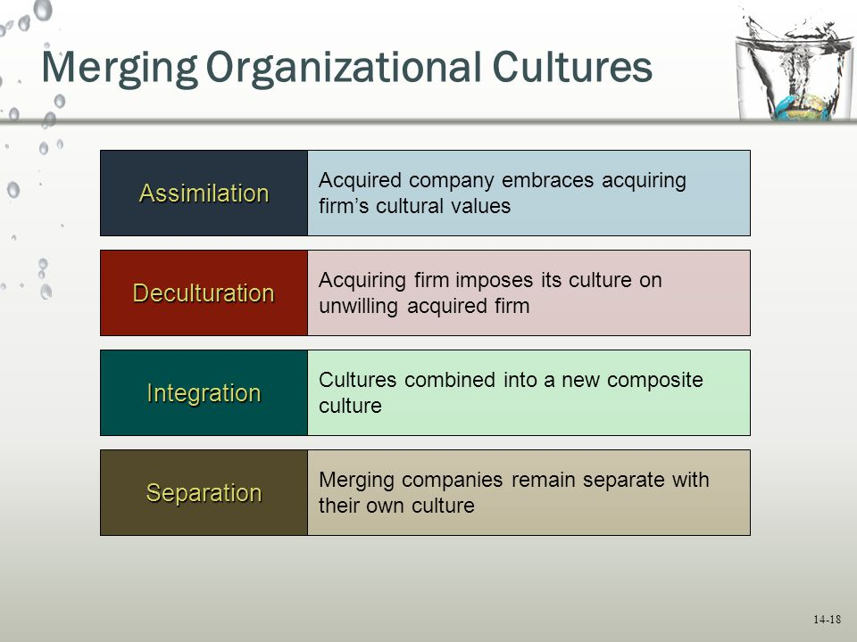 merging of two companies with different cultures Social enterprise company to transform the nation through leadership  development  the two biggest challenges for conducting formal culture.