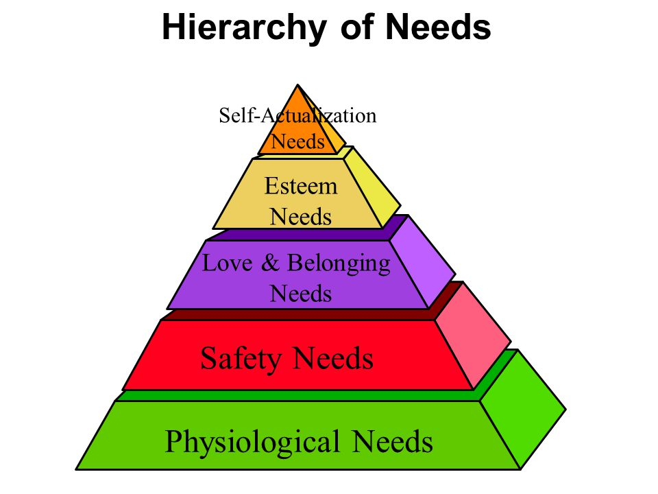 Hierarchy of Needs Safety Needs Physiological Needs Esteem Needs