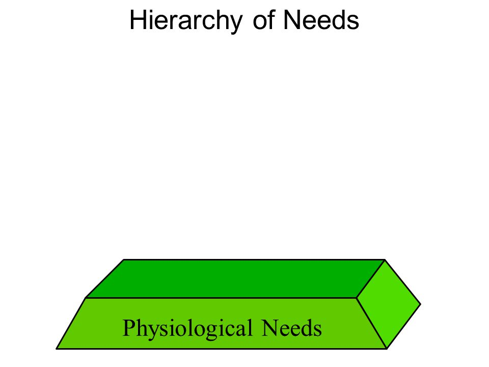 Hierarchy of Needs Physiological Needs