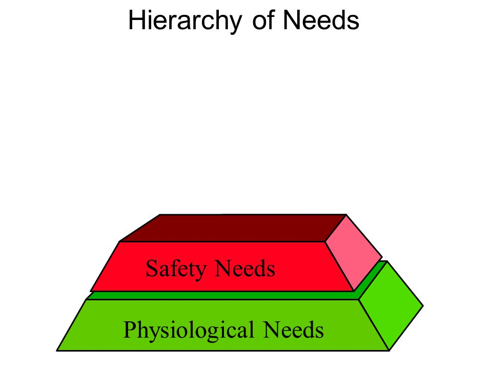 Hierarchy of Needs Safety Needs Physiological Needs