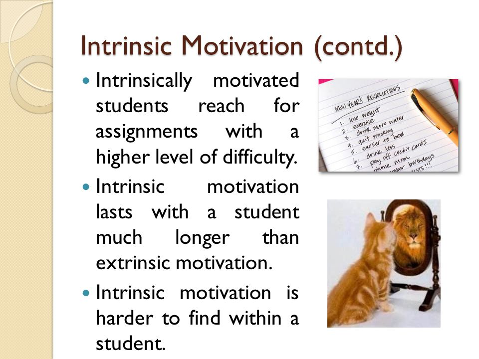 Intrinsic Motivation (contd.)