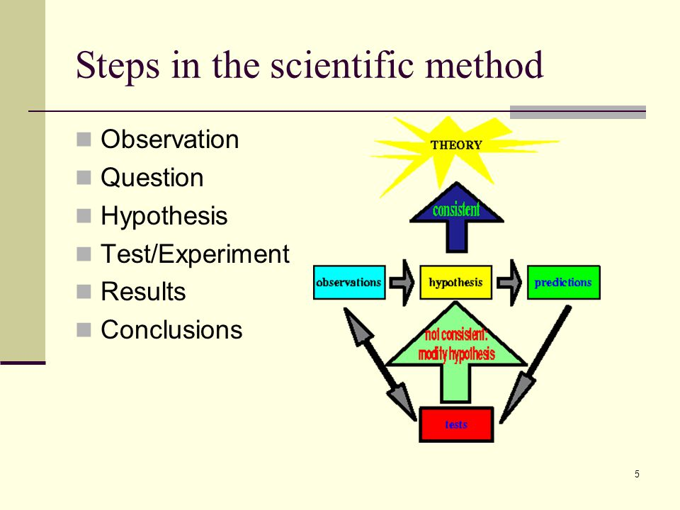 steps of scientific method