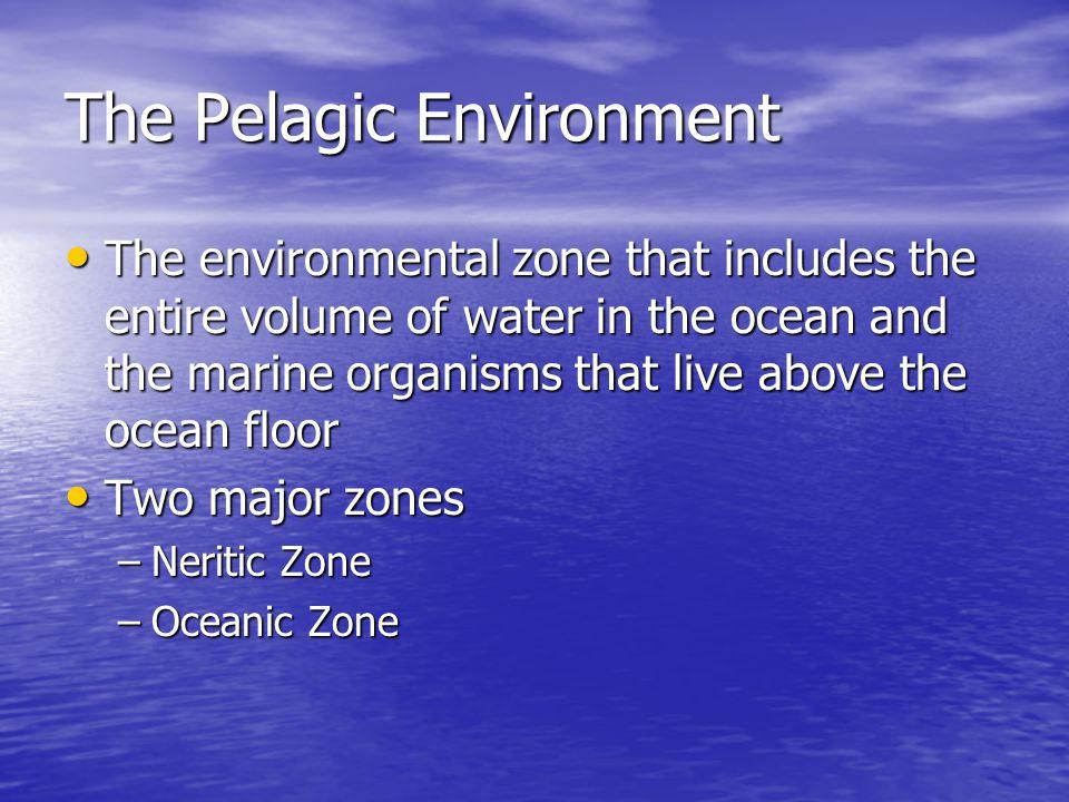 The Pelagic Environment