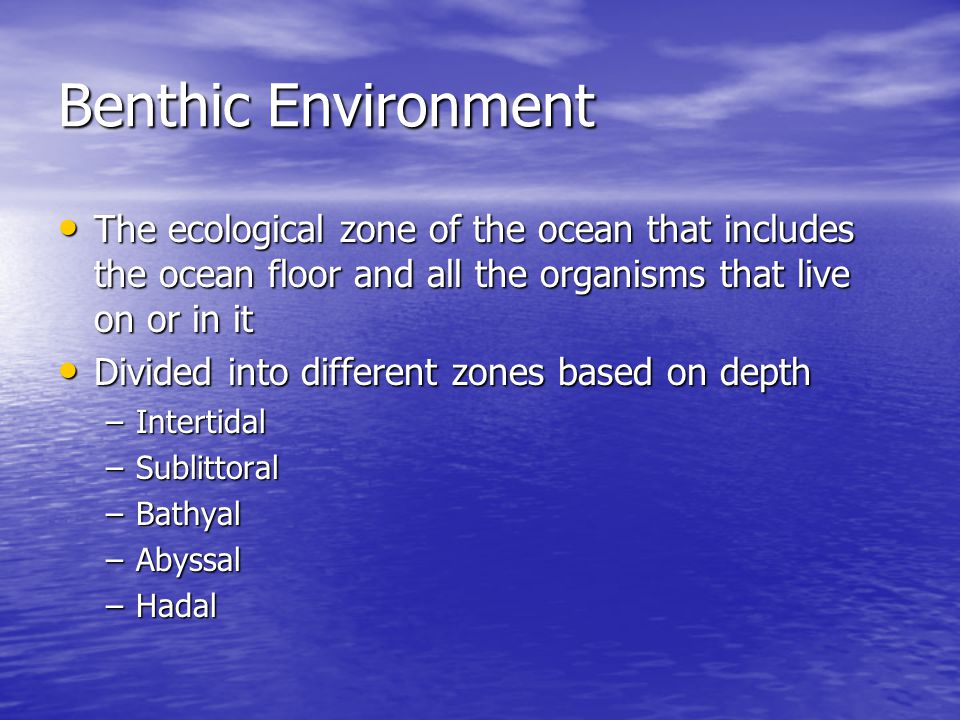Benthic Environment The ecological zone of the ocean that includes the ocean floor and all the organisms that live on or in it.